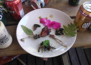 """Gourmet-lähiruokaa; mökin seinään kamikazen suorittanut rastas ei mennyt """"haaskiolle""""."""